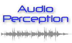 Audio Perception 案例分享